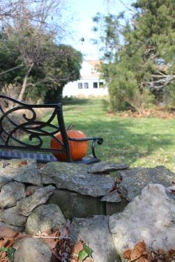 Leach fall garden