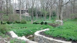 Aullwood Gardens