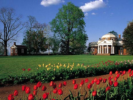 Monticello westlawn_tulips