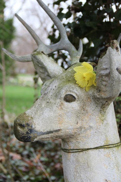 Buck decorated seasonally