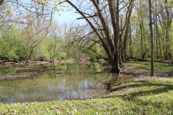 Little Darby Creek
