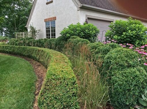 in garden formal 7-9-15