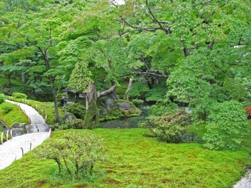 img_0924-shugakuin-moss-resize